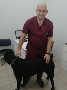 23.10. Dogs Breeder expert. Ігор Вєнєтуліс. Найчастіші причини звернення до ветеринарного хірурга